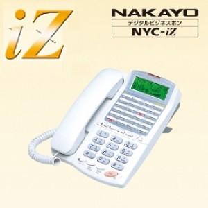 nyc-iz-17
